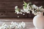 Cherry flowers on grunge wooden background — Stock Photo