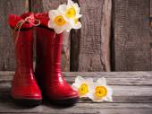 Red child garden shoes with spring flowers — Stock Photo