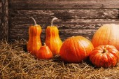 Various pumpkins on wooden background — Stock Photo