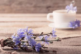 Cup of tea with chicory on wooden background — Stock Photo