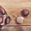Chocolate shells on wooden background — Stock Photo #71433761