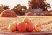 Pumpkins on wooden table outdoor — Stock Photo