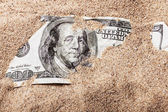 100 dollar bill in sand — Stock Photo