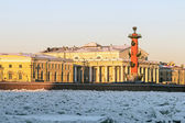 Spit of Vasilievsky Island in winter — Foto de Stock