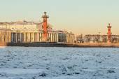 остров vasilievsky зимой, санкт-петербург — Стоковое фото