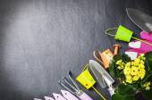 Gardening tools background — Stock Photo