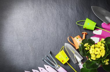 Gardening tools background