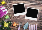 Gardening tools and photo frames — Foto Stock