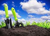 Tools in garden soil — Стоковое фото
