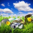 Green grass with garbage — Stock Photo #68809935