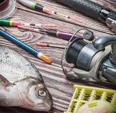 Attrezzatura da pesca e orate pescate — Foto Stock