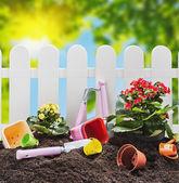 Flowers and tools on garden soil — Stok fotoğraf