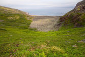 Coast of Barents sea with bay — Stockfoto