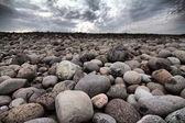 Boulders beach on shore of Barents sea — Stock Photo