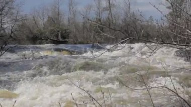 The rapid flow of the river 4 — Stock Video