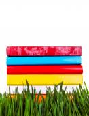 Books in the Grass — Stock Photo