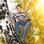 Teenager climb a Tree — Stock Photo