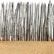 Wooden Fence on the Sand — Stock Photo #54947685