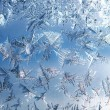 Ice on the Window — Stock Photo #56042847