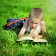 Kid reads a Book — Stock Photo #57648757