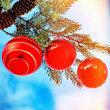 Christmas Decorations — Stock Photo #58363103