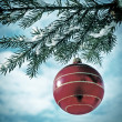 Christmas Decorations — Stock Photo #58363141