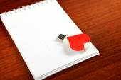 USB Flash Drive on the Note Pad — Стоковое фото