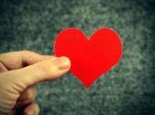 Heart Shape in the Hand — Stock fotografie