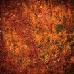Rust Texture — Stock Photo #69758219