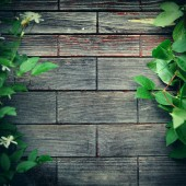 Wooden Background outdoor — Stock Photo
