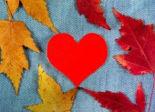 Autumnal Leaves and Heart — Photo