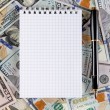 Blank Note Pad on the Money — Stock Photo #77634368