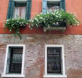 Windows with shutters — Stock Photo