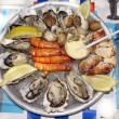 A plate of oysters mussels shrimp Breakfast in the Mediterranean. — Stock Photo #64134621