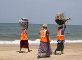 Women collect garbage on a beach. India Goa — Stock Photo