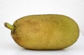 Large ripe jackfruit. India Goa. — Stock Photo