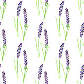 Watercolor painted seamless lavender pattern. — Stock Vector