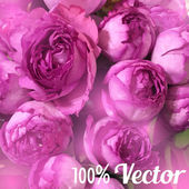 Vector card with peony roses. Wedding, greeting or birthday card design — Vector de stock