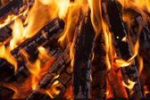 Beautiful fire with flames charred wood — Stock Photo
