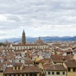 Florence Red Roofs — Stock Photo #61476587