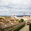 Florence Red Roofs — Stock Photo #61476611