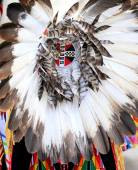 Native american indian. — Photo