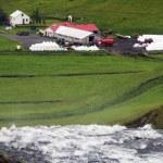 Ферма в зеленой долине в Исландии — Стоковое фото #72676399