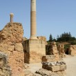 Old Carthage ruins in Tunisia — Stock Photo #70388659
