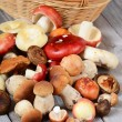 Raw boletus edulis mushrooms — Stock Photo #70389231