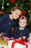 Girls sitting near Christmas fur-tree — Stock Photo