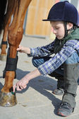 Boy cleans a hoof of horse — Stock Photo