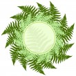 Fern leaves frame — Stock Vector #56592105