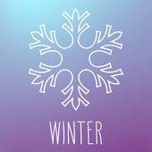 Snowflake and Winter — Stock Vector