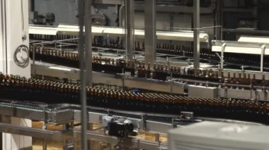 Beer factory interior with a lot of machines — Stock Video